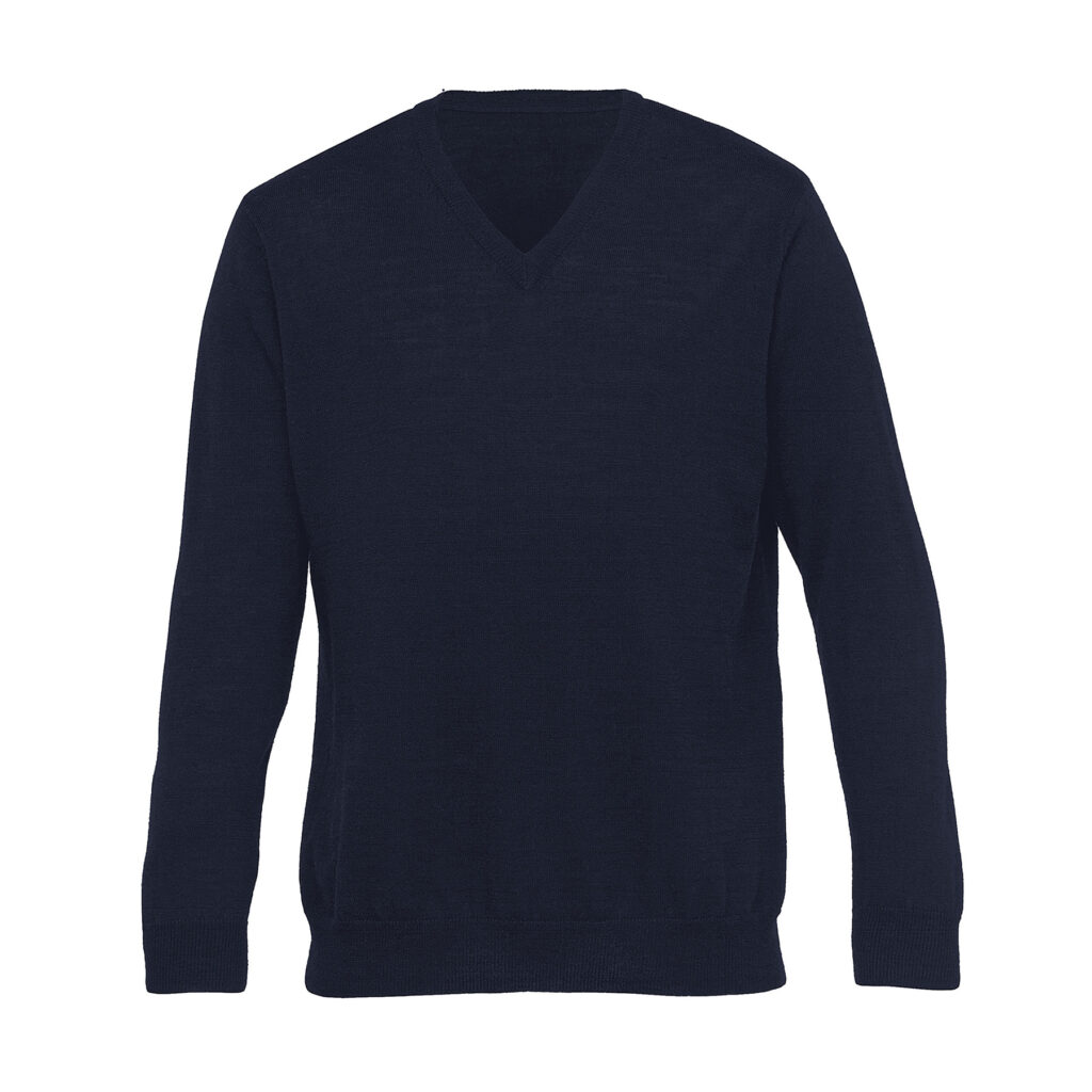 The Catalogue Merino Detailed Vee Pullover – Mens